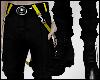 !AAE! Cargos + Pants Y