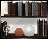 [CVT]TSS Bookshelf