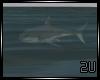 2u Animated Shark