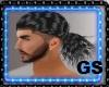 PONY TAIL GRAY HAIR