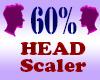 Resizer 60% Head