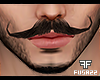 F. Gentleman Moustache