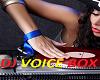 Lola Dj Voice Box
