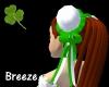*B St.PatricksDay BaoBao