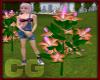 (CG) Hibiscus Tree-Pink
