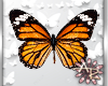 ! Monarch Butterflies