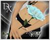 =DX= Derivable Rose