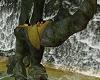 Waterfall Romantic Rock