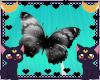 FOX Black butterfly