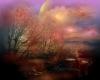 TR Beautiful Sky