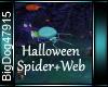 [BD]HalloweenSpider+Web
