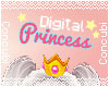 Digital Princess Sign