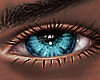 B! Sta Eyes x