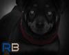 [RB] Black Dog Lerm