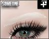 + sleek brows white