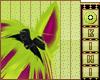 Kiwi*Chartreuse E.
