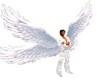 Asas Anjo luz