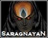 Saragnayan Hair