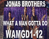 Jonas-WhatAManGottaDo