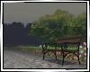 City Garden Park ! 庭