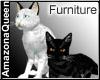 Cats black & white F
