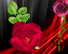 [D] Pink Handheld Rose 2