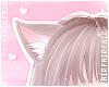 F. Kitten Ears Cake