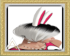 (AL)Bunny Ears Animated