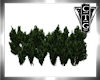 CTG OUTDOOR GREEN HEDGE