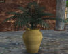 plant with gold vase 2