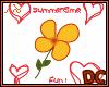 *DC Summertime Fun!