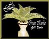 MzM Cream Gold Planter