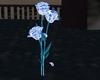 blue inked roses