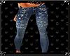 [DZ]Jeans paint