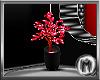 *M*Escade~Plant~