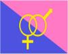 Straight Pride Flag