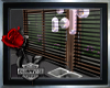 ~Bloack Animated Blinds~