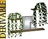 3N:DERIV.Wall SidePlants
