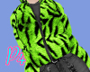 Green tiger-1259