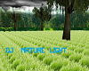 Add on nature DJ LIGHT