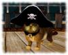 ! Pirate Tabby Cat
