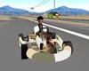 gokart  racer