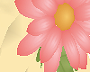 [AG] Daisy Ring