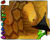 Bee hive honey cave