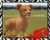Safari Golden Lion Baby