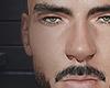 Varto brows/beard