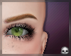 [T69Q] Green Forest Eyes