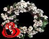 Dogwood Wreath W H