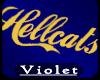(V) Hellcatsgym