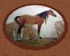 Horse Rug Round